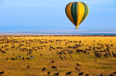 Masai Mara Sunrise Balloon Safari & Breakfast Thumbnail