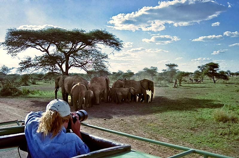 Kenya & Uganda Wildlife Exploration