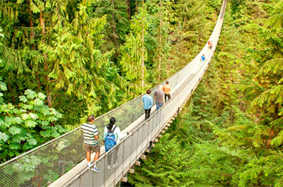 Capilano Suspension Bridge & Grouse Mountain Thumbnail