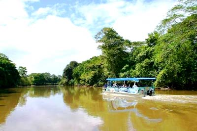 Full Day Cano Negro Boat Tour Thumbnail