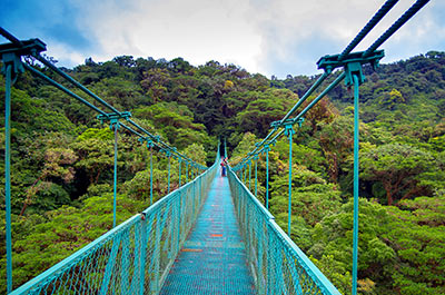 Selvatura Hanging Bridges Tour 10:30 AM Thumbnail