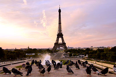 Evening City Tour, Cruise & Eiffel Tower Tour (CIT) 6:15PM Thumbnail