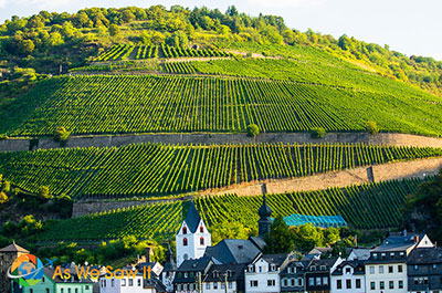 Rhineland Wine Village Dinner Thumbnail