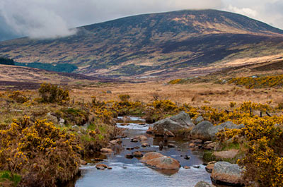 The Wicklow Mountains Tour 9:15 AM Thumbnail