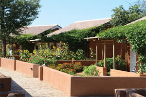 Damara Mopane Lodge Image