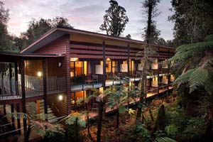 Te Waonui Forest Retreat Image