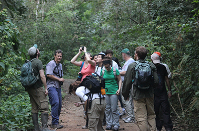 Half Day Soberania National Park Walking Tour 8:00 AM Thumbnail