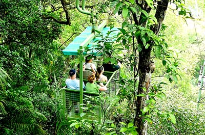 Soberania National Park Aerial Tram with Ecological Exhibitions Thumbnail