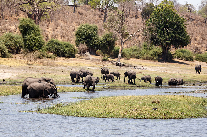 Escorted Tours Of South Africa And Victoria Falls