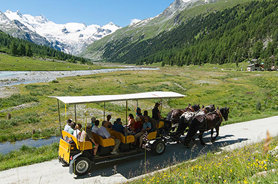 Horse-Drawn Carriage Ride in the Val Roseg Thumbnail